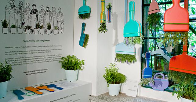 Grandmother tips strumenti per pulire e profumare la casa con le erbe aromatiche - Profumare la casa con l ammorbidente ...