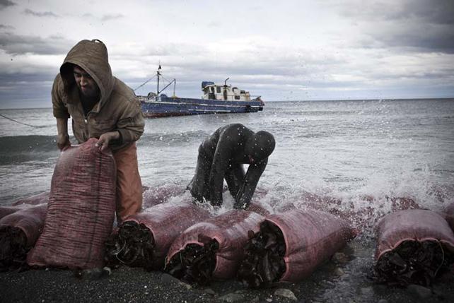 Punta Arenas, Cile. © Sergio Ramazzotti