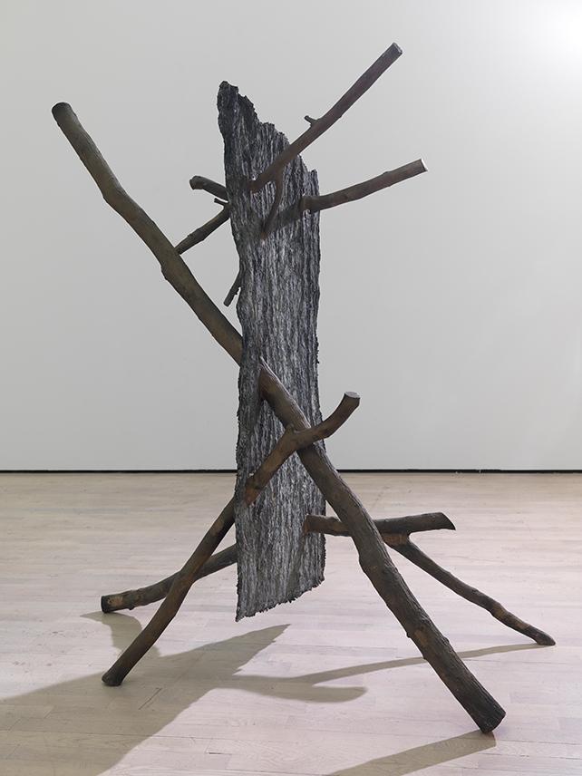 Giuseppe Penone, Lo spazio della scultura, 2001, Mart/Archivio fotografico