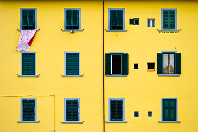 Yellow (from 'Living architectures' project). © Carlo Cafferini