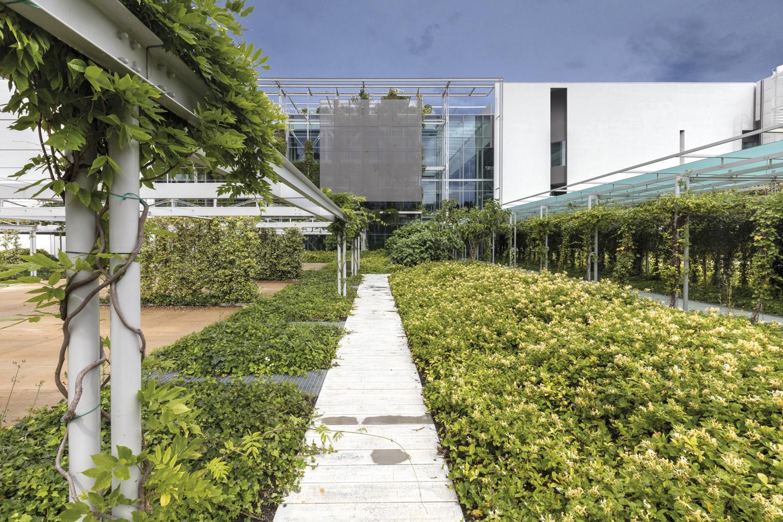Greenbuilding magazine, Gruppo Prada, Ph. Gabriele Croppi