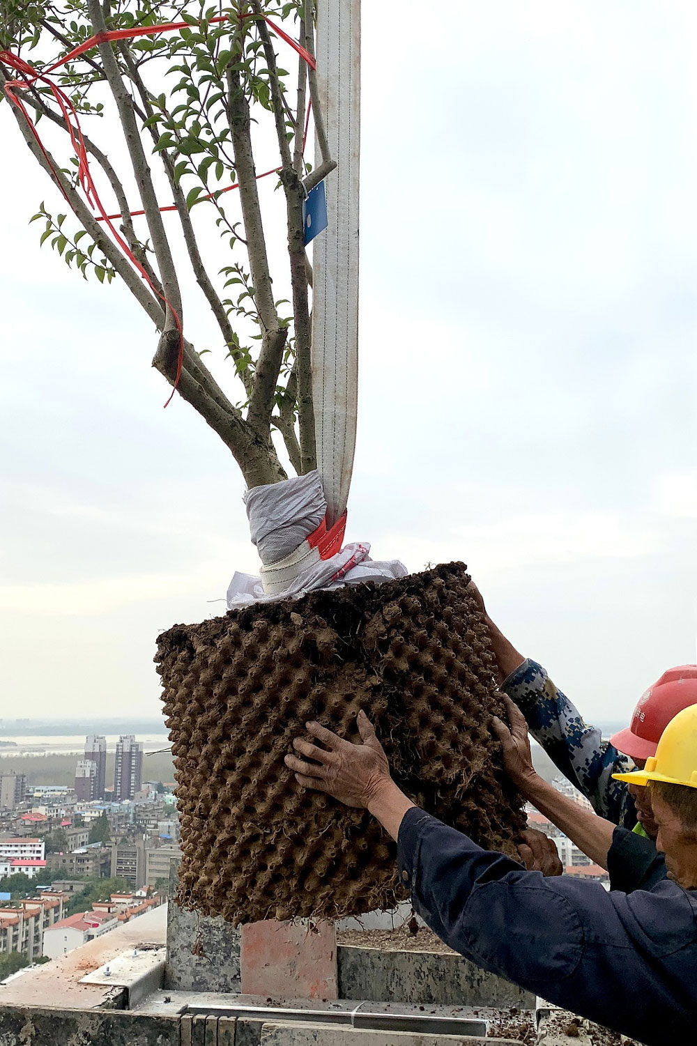 Greenbuilding magazine, Ph. Easyhome. Huanggang Vertical Forest